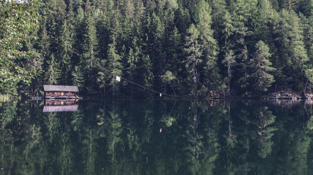 корпортив в коттедже в лесу на озере